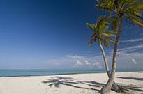 Salida Grupal Islas del Caribe y Punta Cana