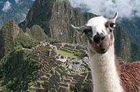 Salida Grupal Perú Maravilloso