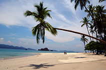 Imagen de playa Tortuga en Costa Rica