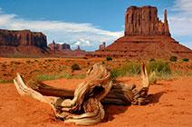 Imagen del Parque Nacional Gran Cañón en Arizona