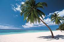 Imagen de playa en Punta Cana